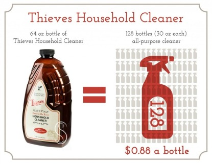 thieves-household-cleaners